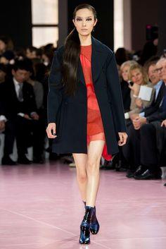 Christian Dior Fall 2015 Ready-to-Wear Fashion Show - Fei Fei Sun (Elite)