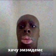 Best Memes, Dankest Memes, Jokes, Meme Pictures, Reaction Pictures, Random Pictures, Hello Memes, My Stomach Hurts, Russian Memes