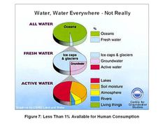 water consumption & factory farming memes - Google Search