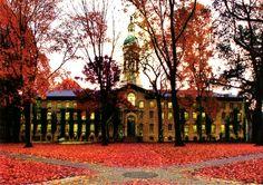 Princeton University :D