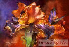 Gallery.ru / Фото #48 - Потрясающие цветы от Кэрола Каваларис - ninatela