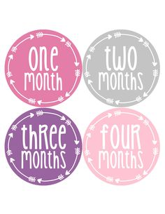 Baby Girl Monthly Milestone Age Stickers Style #1010