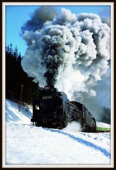 D 51 444 - SL #SL #Train #蒸気機関車 #広田尚敬