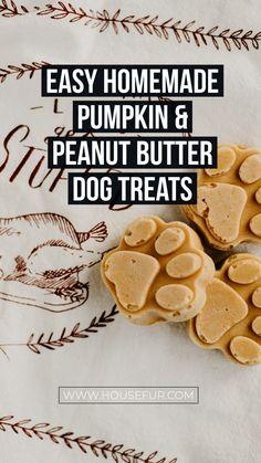 Homemade Pumpkin & Peanut Butter Dog Treats healthy homemade pumpkin dog treatsEasy street Easy Street may refer to: Soft Dog Treats, Frozen Dog Treats, Puppy Treats, Diy Dog Treats, Healthy Dog Treats, Pumpkin Dog Treats Homemade, Golden Retriever, Labrador Retriever, Dog Biscuit Recipes