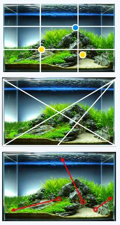 Time to start a debate: is it possible to pretty mechanically 'test' for a good and bad hardscape? I'm beginning to think that for or more of cases*, it. Aquarium Garden, Aquarium Landscape, Nano Aquarium, Nature Aquarium, Home Aquarium, Aquarium Design, Aquarium Fish Tank, Planted Aquarium, Aquascaping