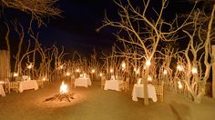 11 All-Inclusive Resorts That Don't Suck - Kapama Karula Kruger National Park, South Africa Kapama Private Game Reserve