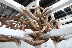 Baitogogo is a half-sculptural, half-architectural installation by Brazilian artist Henrique Oliveira that presents a surreal growth of tree branches out of white columns.