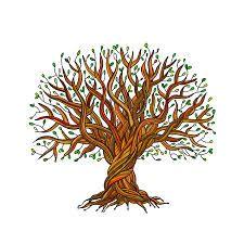 رابط الى تنزيل صور شجرة العائلة ,لا تنسى تكبير الصور ليتسنى لك قراءة الأسماء Please Click on the tree to download the Family Tree and make sure to zoom in !. Also i have put GEDCOM file which will enable you to use the family tree on any other platform. Enjoy ! Ali.kekhia@Gmail.com Brain Shape, Turn Your Life Around, Tree Roots, Big Tree, Tree Of Life, Proverbs, Your Design, Decorative Bowls, Healthcare News