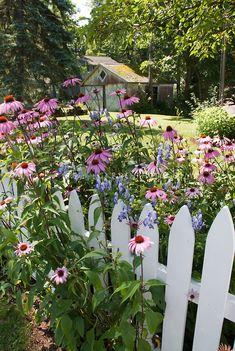 Summer Flower Garden U0026 Fence Front Yard In Front Of Picket Fence.
