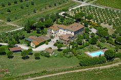 La Fattoria del Rio di Sopra, fields, olive trees and the swimming pool.