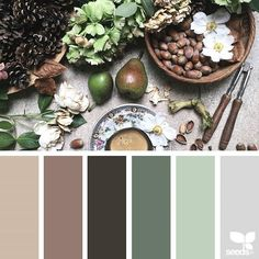 today's inspiration image for { foraged hues } is by @clangart ... thank you, Chantal, for another amazing #SeedsColor image share!
