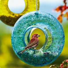 This colored glass bird feeder caught my eye --
