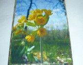 """Carte double """"Coucou messager du printemps """""""