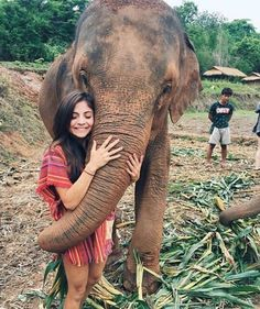 www.wanderfullyrylie.com ✧ Pinterest: wanderfullyrylie ; Instagram: wanderfullyrylie Never Alone, Solo Travel, The Incredibles, Our Life, Elephant, Beautiful Places, Elephants, Travel Alone