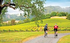 Napa Valley California Bicycle tour with Backroads active travels
