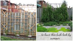Spring Forward - Build a Trellis and Privacy Screen