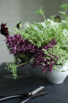 simply beautiful pairing for a bouquet (Queen Anne's lace and lilac) Flower Arrangements Simple, Flower Vases, Spring Bouquet, Spring Flowers, Lilac Bouquet, Cut Flowers, Wild Flowers, Fresh Flowers, Purple Flowers