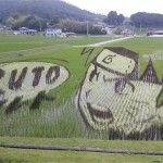 Japonské rýžové umění