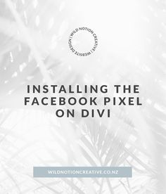Everything you need to know about installing the Facebook Pixel on Divi One Job, Facebook Marketing, A Team, Need To Know, Everything, Web Design, Social Media, Website, Creative