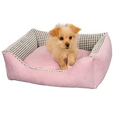 Favorite Modern Removable Ultra Soft Warm Pet Bed Puppy Dog Cat Sleeping Cushion Suits for Daily Use - http://www.thepuppy.org/favorite-modern-removable-ultra-soft-warm-pet-bed-puppy-dog-cat-sleeping-cushion-suits-for-daily-use/