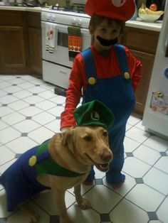 Mario u0026 Luigi. Luigi CostumeDog ... & mario-bros-dog-costumes | Halloween Fun! | Pinterest | Mario bros ...