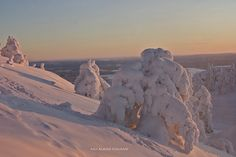 On December in Ruka Kuusamo,Finland by Aili Alaiso