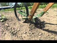 Hilling your corn when it& small can go a long way to prevent wind damage in the future. The Double Wheel Hoe with Plow Set attachments is the perfect tool . Homestead Gardens, Farm Gardens, Garden Projects, Garden Tools, Garden Cultivator, Wind Damage, Farm Tools, Garden Equipment, Small Farm