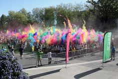 Seattle Color Run- we will train for this and that will be your motivation.