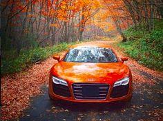 Audi R8 #orange
