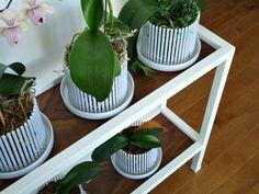 30 Impressive DIY Plant Stands You Can Build at Home Metal Plant Stand, Diy Plant Stand, Plant Stands, Furniture Makeover, Diy Furniture, Concrete Planter Boxes, Walnut Plywood, Corner Plant, Plywood Shelves