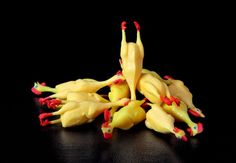 Rubber Chicken Pile by ErrantPixels on Etsy Rubber Chicken, Etsy