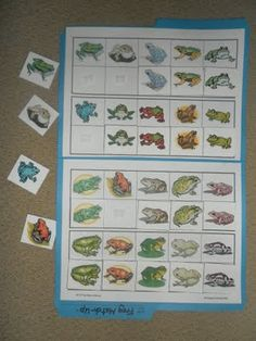Another great page on frog unit study ideas.  Here is a photo of the file folder game made from the Montessori  printshop cards