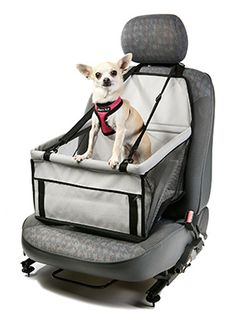 This dog cradle folds flat so that you can keep it in the car at all times. It takes minutes to atta Dog Car Accessories, Dog Car Seats, Dog Safety, Dog Carrier, Dog Travel, Pet Carriers, Dog Coats, Dog Harness, Dog Friends