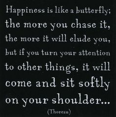 I love the idea of happiness as a butterfly. It reminds me of the way Virginia Woolf described light on a window sill in The Waves. And let's be honest, who doesn't love the precise amount of light coming through your window?