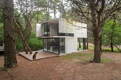 Argentinian architect Luciano Kruk has designed a concrete holiday home in among the pine trees of a forest near Buenos Aires.