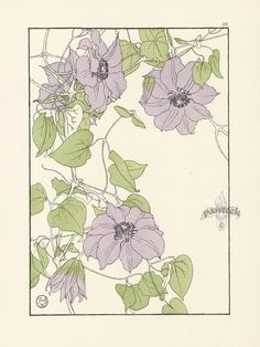 "The Clematis - Jeannie Foord - ""Decorative Flower Studies"", Pochoir Prints, 1901."