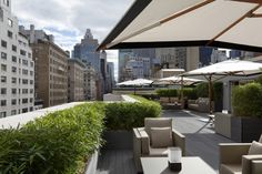 Rooftop Gardens & Terraces New York City - Interior Foliage Design