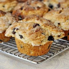 The Best Chocolate Chip Muffins Ever!!