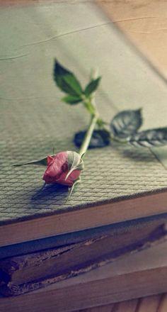 Libros<3