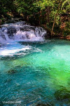 Jalapão, Tocantins. Conheça melhor essa região no coração do Brasil e os incríveis fervedouros, piscinas naturais onde é impossível afundar