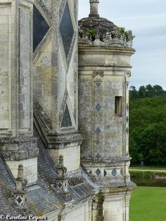 The Tuffeau stone. Easier to carve, harder to maintain. Chateau de Chambord, June 2014 A. Tyner Antiques