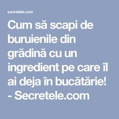 Cum să scapi de buruienile din grădină cu un ingredient pe care îl ai deja în bucătărie! - Secretele.com Cross Stitch Charts, Interior Design Living Room, Diy And Crafts, Home And Garden, Homemade, Yurts, Cooking Recipes, Gardening, Medicine