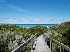 A short walk to the Beach! Victoria Australia, South Australia, Beaches, Explore, World, The World, Peace