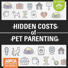 Way beyond adoption fees and that first vet visit, there's a lot to consider before bringing home a new pet. Pet Health Insurance, Dog Insurance, Step Parent Adoption, Dog Information, Cat Info, Luxury Pet Beds, Veterinary Services, Step Parenting, Dog Care