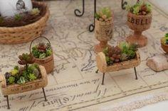 Little cork gardens Wine Cork Art, Wine Cork Crafts, Bottle Crafts, Wine Corks, Succulent Gardening, Succulents Diy, Freetime Activities, Wine Cork Projects, Miniature Fairy Gardens
