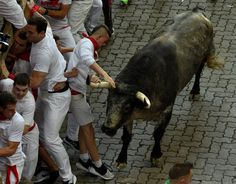 Running of the bulls: The most shocking photographs Pamplona hosts its infamous running of the bulls – part of the annual San Fermin festival – once again  -  July 7, 2017:      Runners try to avoid a Cebada Gago bull