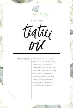 Wellness Encyclopedia: Talking Tea Tree + Hydrating Hair Oil