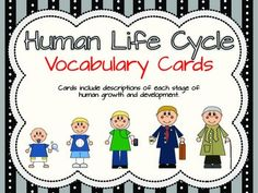 This is a set of 5 vocabulary and description cards depicting the 5 different stages of human growth and development. Each card features the name of the stage, a clipart character in that stage, and 3 descriptions that fit the stage of development. Preschool Lesson Plans, Preschool Science, Science Activities, Science Ideas, Stages Of Human Development, Human Life Cycle, 1st Grade Science, Health Unit, Vocabulary Cards