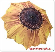 Parasolka składana Słonecznik, Parasolki składane, dla Pań automatyczne, parasolki damskie, parasolki ekskluzywne, piękne parasolki, parasolki, parasole