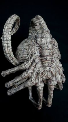 I have no idea who made this scale dead Facehugger (Aliens), but I stand amazed by its quality! Alien Drawings, Dark Art Drawings, Alien Vs Predator, Conquest Of Paradise, Hr Giger Art, Giger Alien, Alien 1979, Alien Tattoo, Alien Concept Art
